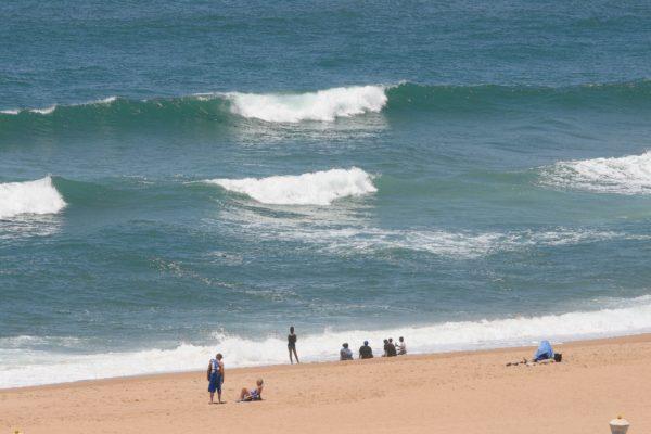 【海】土用波、島嶼、潮目、磯巾着